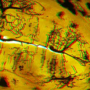 3D anaglyph for red blue 3D glasses Edge-3D microscope